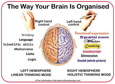 edbb745db9515447ff39243209c08fe1--right-brain-the-brain
